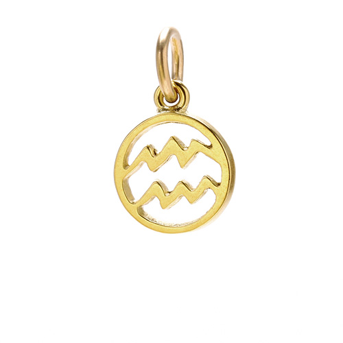 zodiac &quot;aquarius&quot; charm, gold dipped