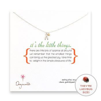 it's the little things sterling silver necklace with wishbone charm : Dogeared Jewels and Gifts