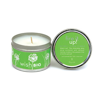 wish big travel tin soy candle-fire it up : Dogeared Jewels and Gifts
