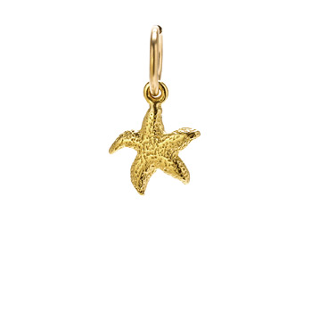 starfish charm, gold dipped