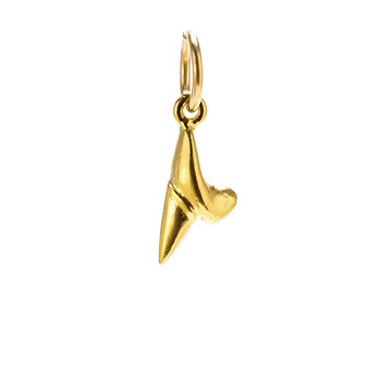 shark+tooth+charm%2C+gold+dipped