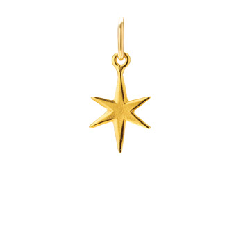 bright star charm, gold dipped