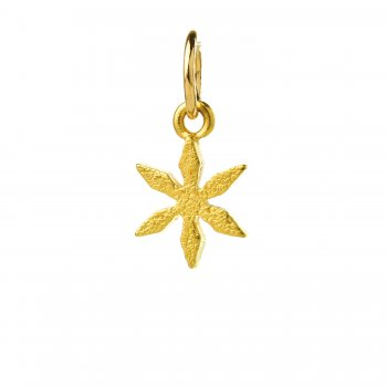 star flower charm, gold dipped