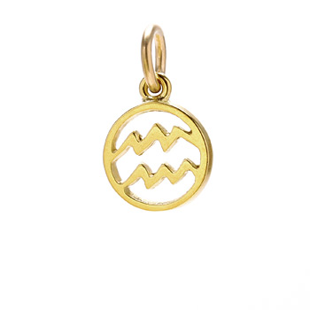 zodiac+%22aquarius%22+charm%2C+gold+dipped
