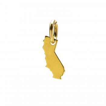 california charm, gold dipped