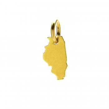 illinois+charm%2C+gold+dipped