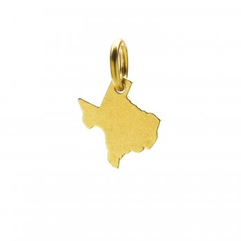 texas+charm%2C+gold+dipped