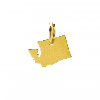 washington+charm%2C+gold+dipped