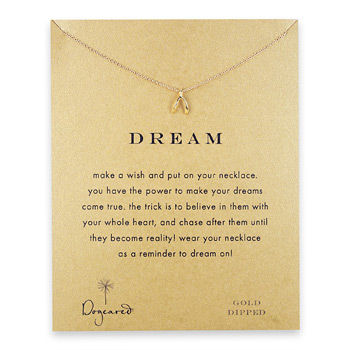 dream+wishbone+necklace%2C+gold+dipped