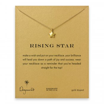 rising+star+full+star+necklace%2C+gold+dipped