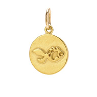 fish charm, gold dipped