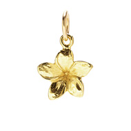 plumeria charm, gold dipped