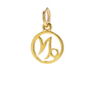 zodiac &quot;capricorn&quot; charm, gold dipped