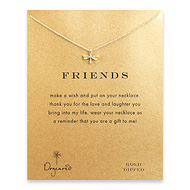 friends dragonfly necklace, gold dipped