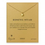 rising star full star necklace, gold dipped
